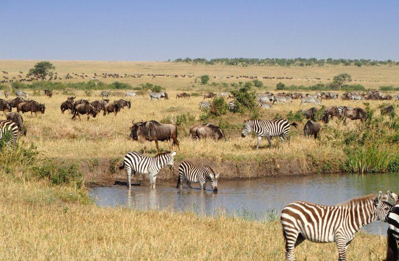 Destination-Kenya