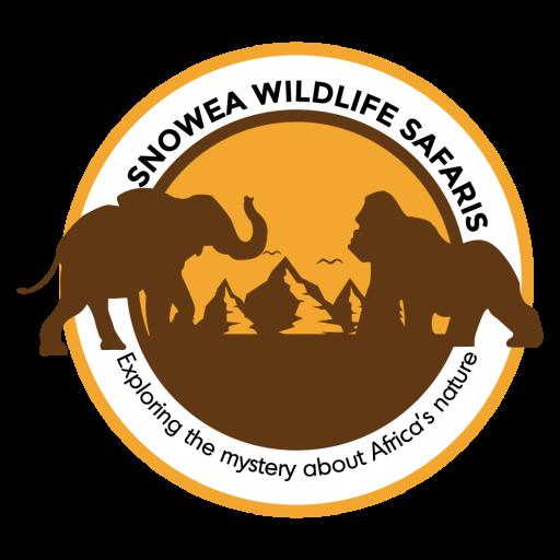 Snowea Wildlife Safaris-Africa